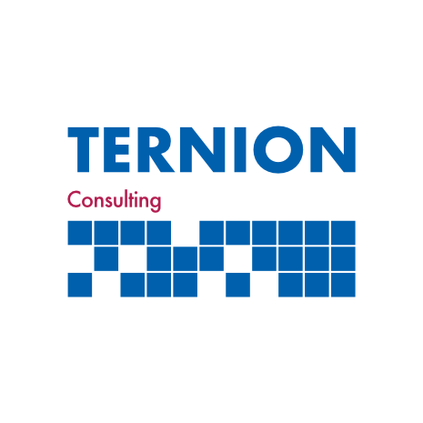 Logo_Ternion_Consulting_Website_465_465