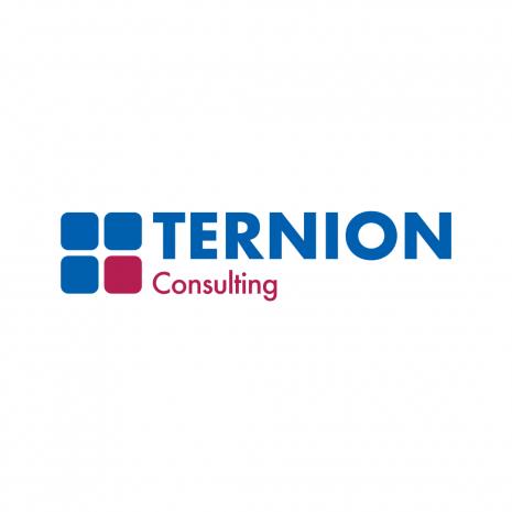 Ternion_Consulting_Neu